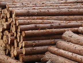 杉木木板料解决方案
